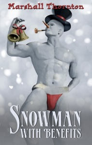 Snowman with benefitsfinal