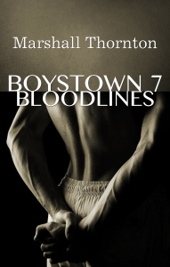 Boystown 7 Cover 2nd Edition2